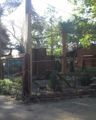 Ogród Zoobotaniczny - Okładka galerii